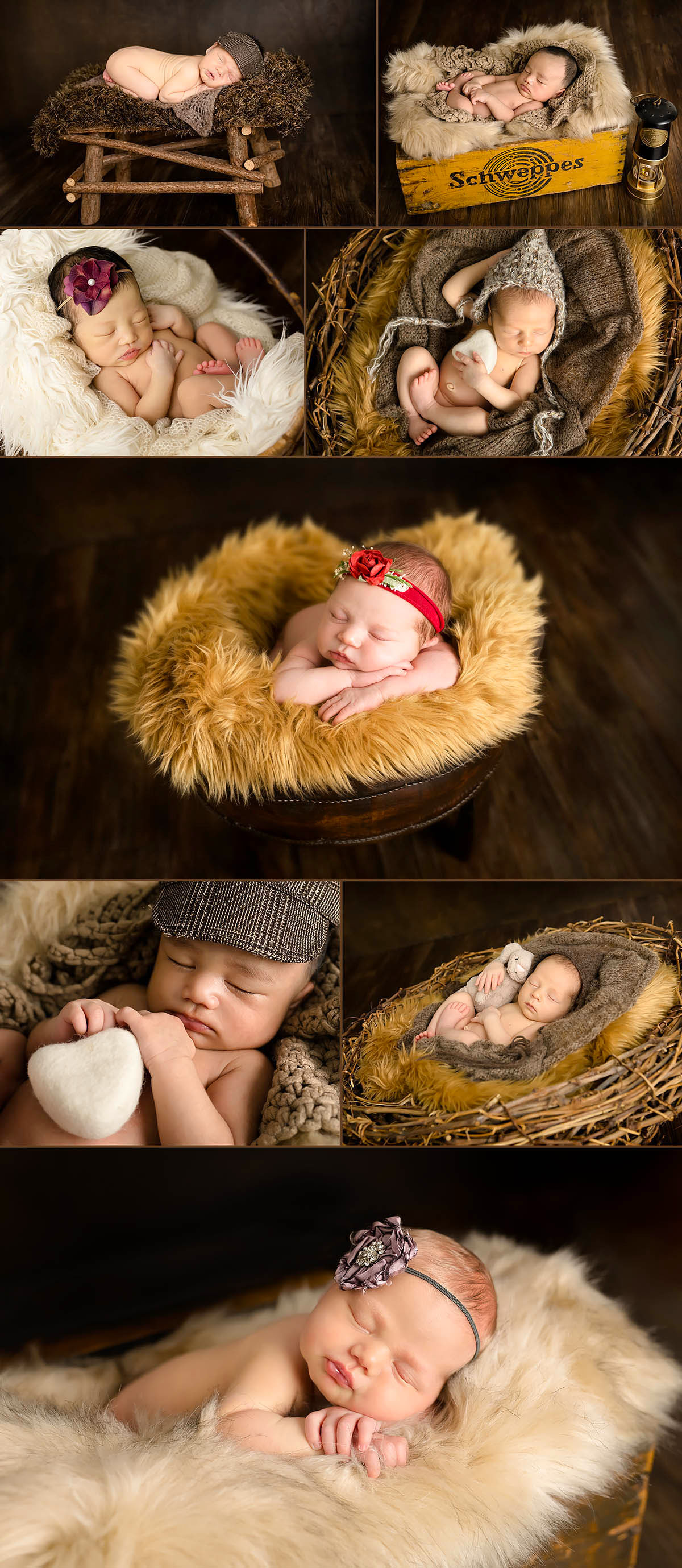 newborn baby photos in perth